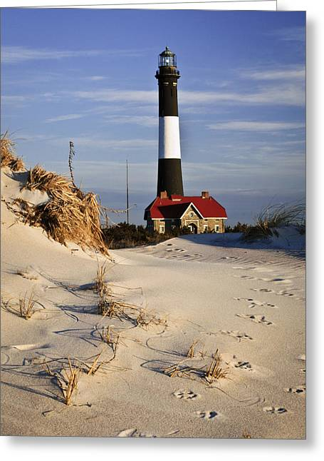Babylon Greeting Cards - Deer Trail to Lighthouse Greeting Card by Vicki Jauron