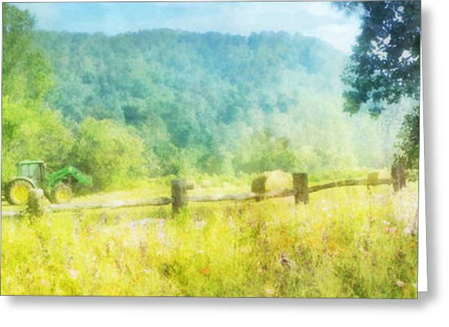 Farmers Field Greeting Cards - Deere in a Field Greeting Card by Francesa Miller