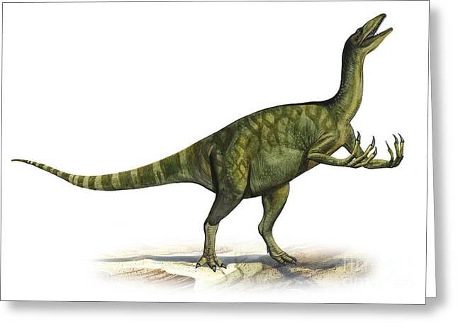 Deinocheirus Mirificus, A Prehistoric Greeting Card by Sergey Krasovskiy