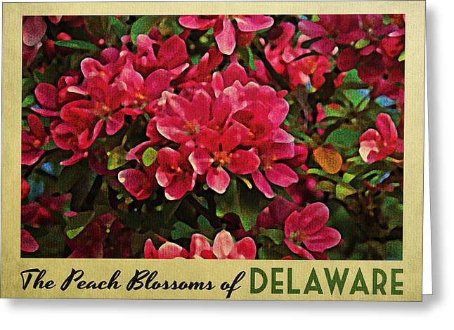Pink Blossoms Digital Art Greeting Cards - Delaware Peach Blossoms Greeting Card by Flo Karp