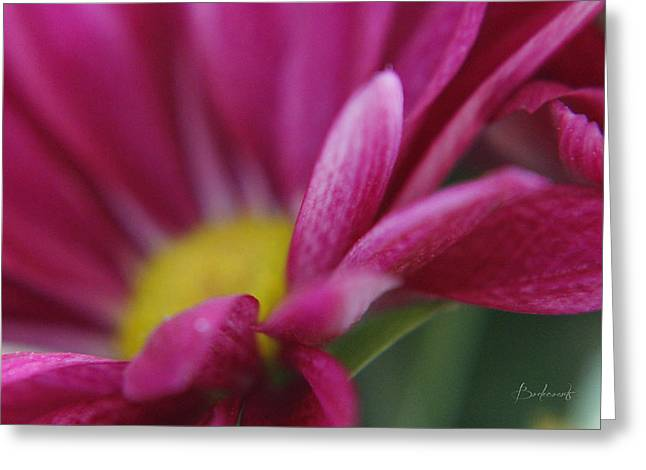 Robin Lewis Greeting Cards - Delicacy Greeting Card by Robin Lewis