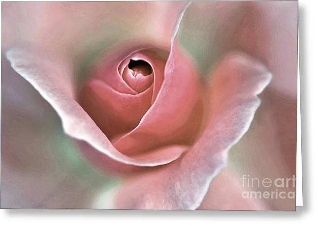 Floral Digital Art Greeting Cards - Delicate Rose Greeting Card by Kaye Menner