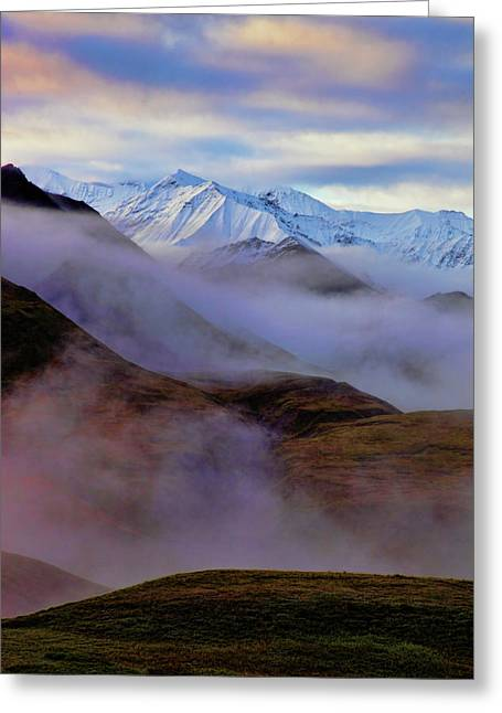Denali National Park Greeting Cards - Denali Dawn II Greeting Card by Rick Berk