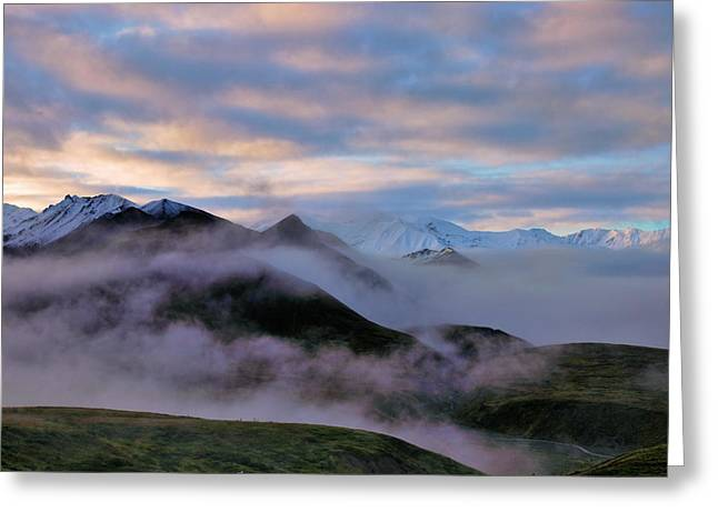 Denali National Park Greeting Cards - Denali Dawn Greeting Card by Rick Berk