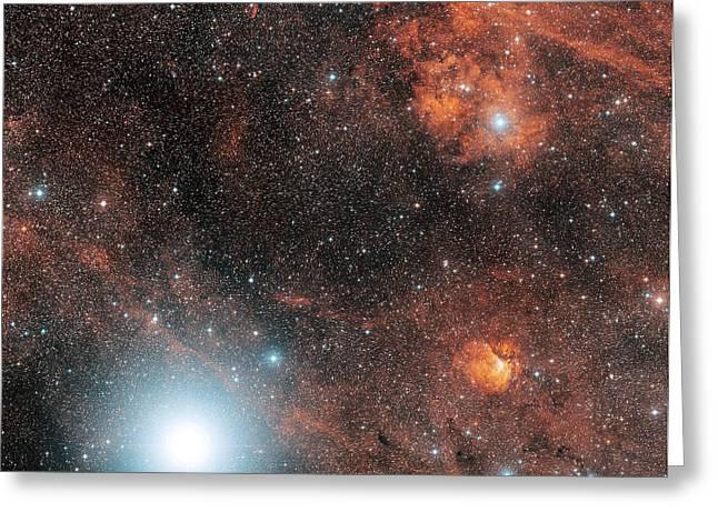 Deneb Greeting Cards - Deneb And Emission Nebulae Greeting Card by Davide De Martin