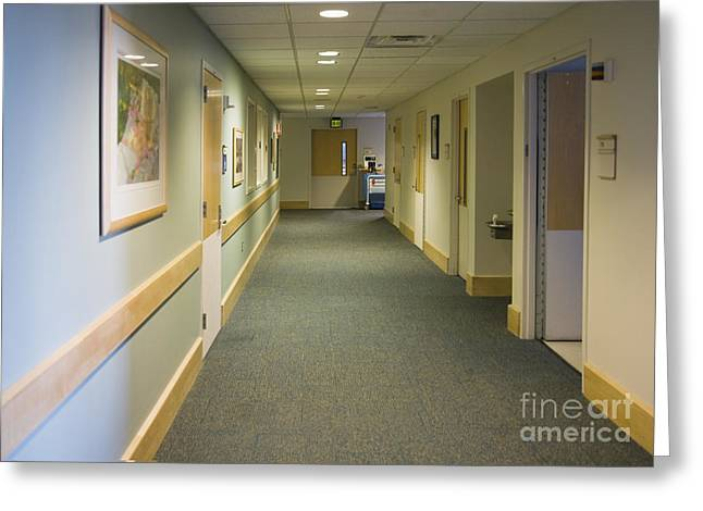 Checkup Greeting Cards - Dental Facility Hallway Greeting Card by Andersen Ross