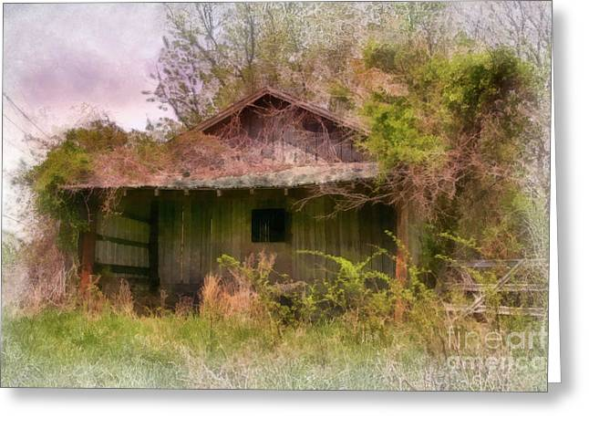 Engulfing Greeting Cards - Derelict Shed Greeting Card by Susan Isakson