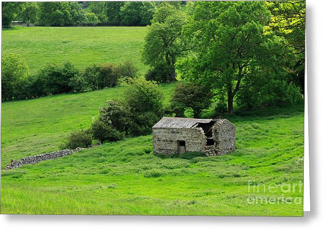 Outbuildings Greeting Cards - Derelict stone barn in Bishopdale Greeting Card by Louise Heusinkveld