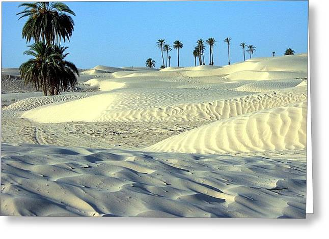 Ilendra Vyas Greeting Cards - Desert looking so cool Greeting Card by ilendra Vyas