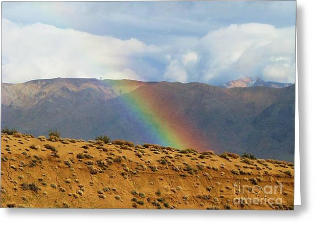 Desert Rainbow Greeting Card by Michele Penner