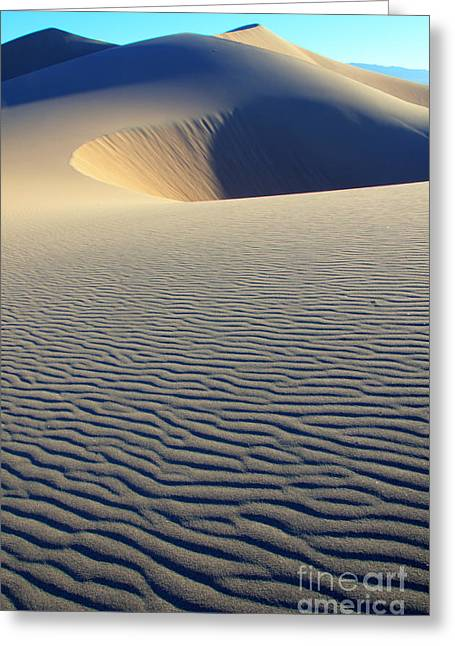 Sand Pattern Greeting Cards - Desert Solitaire Greeting Card by Bob Christopher