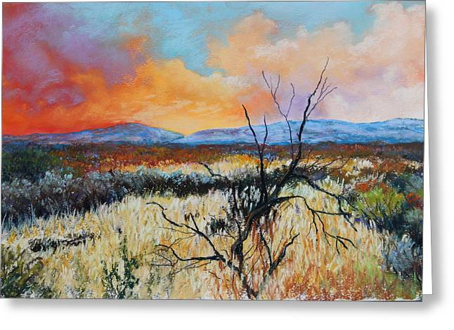 Mountain Valley Pastels Greeting Cards - Desert Sunset 2 Greeting Card by M Diane Bonaparte