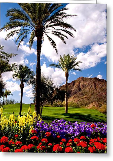 Tropical Golf Course Greeting Cards - Desert Tropic Greeting Card by Anthony Citro