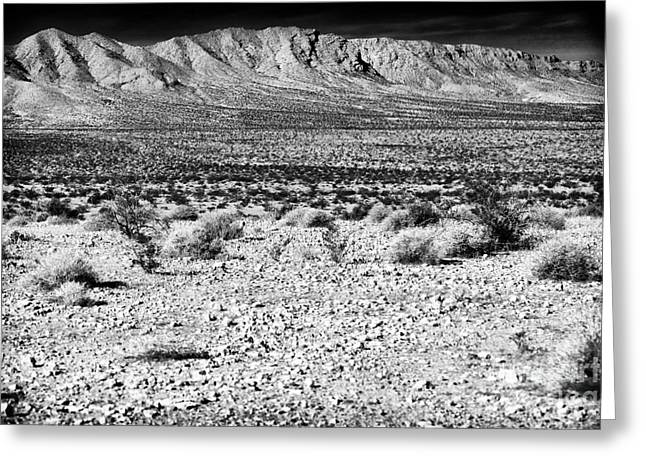 Desert View Greeting Cards - Desert View Greeting Card by John Rizzuto