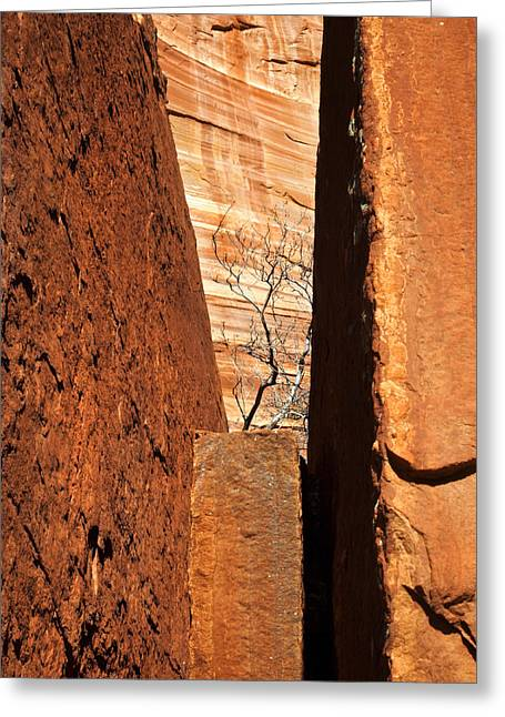 Sedona Red Rock Greeting Cards - Desert Vise Greeting Card by Mike  Dawson