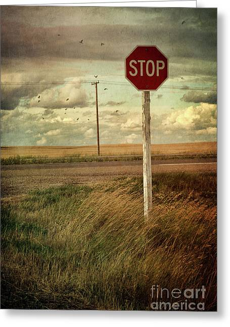 Saskatchewan Prairies Greeting Cards - Deserted red stop sign on the prairies Greeting Card by Sandra Cunningham
