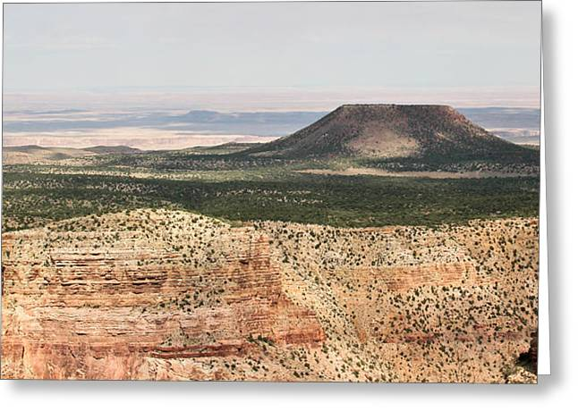 The Grand Canyon Greeting Cards - Desertscape Greeting Card by Heidi Smith