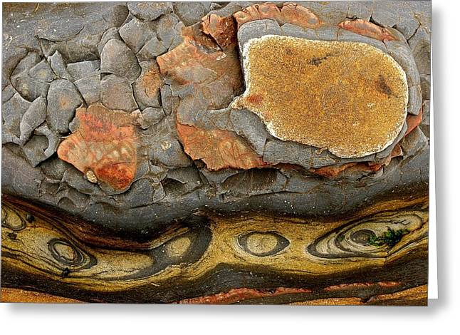 Best Sellers -  - Point Lobos Reserve Greeting Cards - Detail Of Eroded Rocks Swirled Greeting Card by Charles Kogod