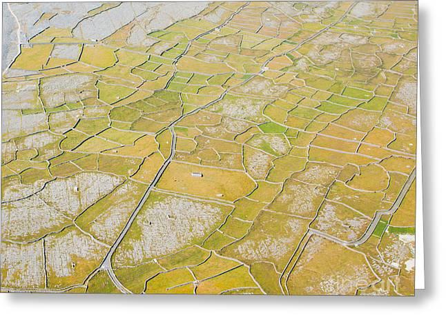 Aran Islands Greeting Cards - Detail of Inisheer island Greeting Card by Gabriela Insuratelu