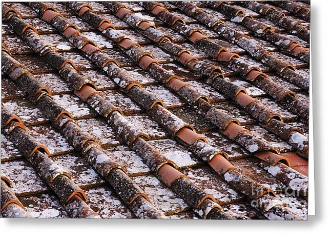 Chianti Greeting Cards - Detail of Roof Tiles Greeting Card by Jeremy Woodhouse