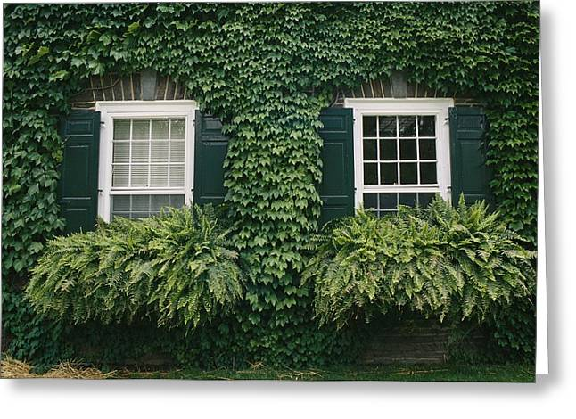 Cooperstown Greeting Cards - Detail Of The Ivy-covered James Greeting Card by Raymond Gehman