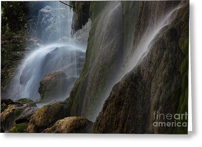 Detailed View Of Gorman Falls Greeting Card by Keith Kapple