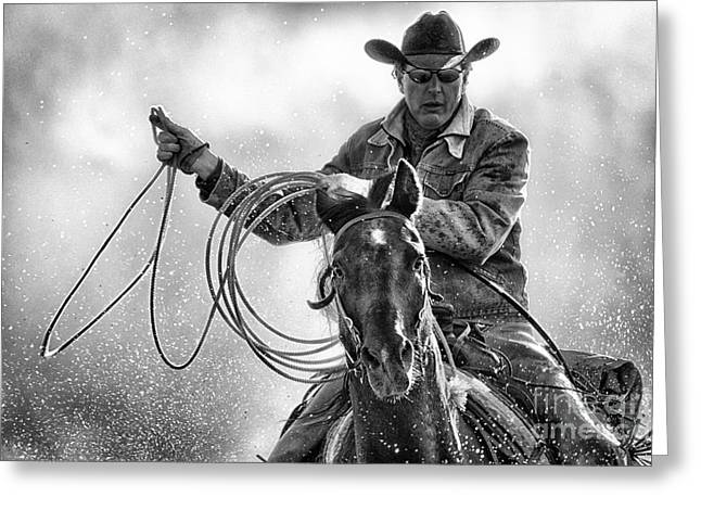 Horse And Riders Greeting Cards - Determination Greeting Card by Heather Swan