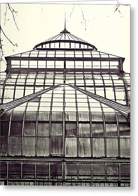Belle Isle Greeting Cards - Detroit Belle Isle Conservatory Greeting Card by Alanna Pfeffer