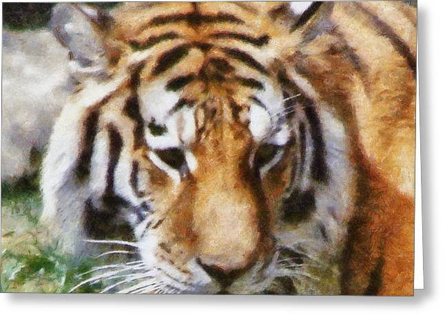 Detroit Tigers Digital Art Greeting Cards - Detroit Tiger Greeting Card by Michelle Calkins