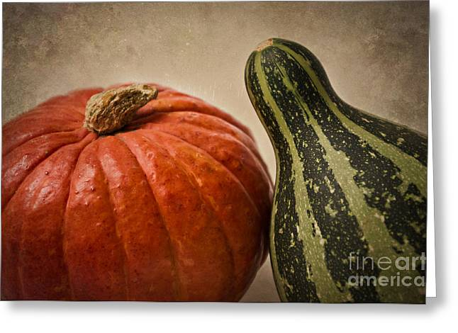 Pumpkins Mixed Media Greeting Cards - Deux Courges Greeting Card by Angela Doelling AD DESIGN Photo and PhotoArt