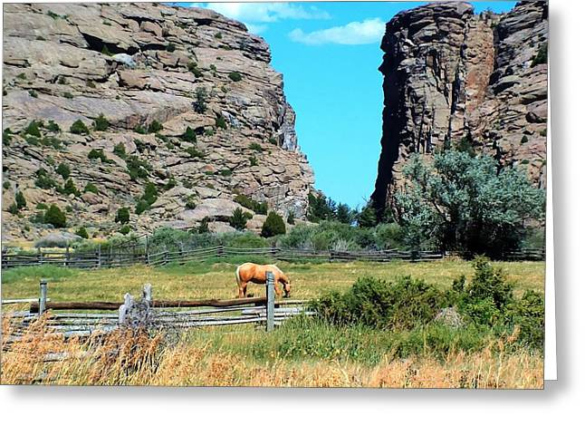 Sweetwater Greeting Cards - Devils Gate Summer Greeting Card by Vikki Correll
