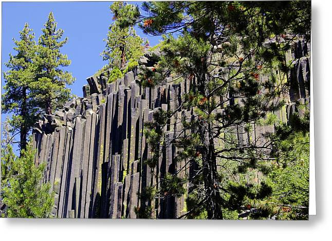 Woodpile Greeting Cards - Devils Postpile - Americas Volcanic Past Greeting Card by Christine Till