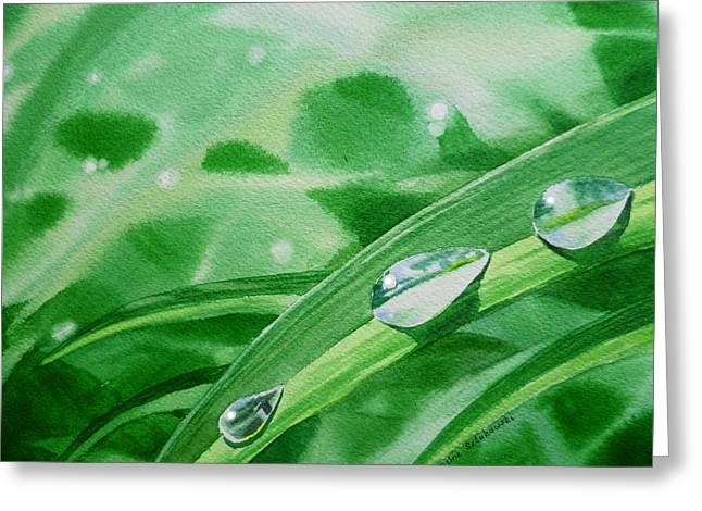 Morning Dew Greeting Cards - Dew Drops Greeting Card by Irina Sztukowski