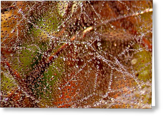 Dewdrops - Colorful Abstract Greeting Card by Carol Groenen