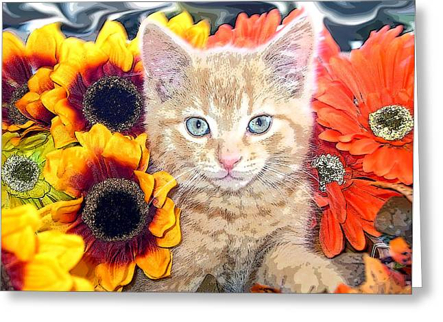 Kitteh Greeting Cards - Di Milo - Sun Flower Kitten with Blue Eyes - Kitty Cat in Fall Autumn Colors with Gerbera Flowers Greeting Card by Chantal PhotoPix