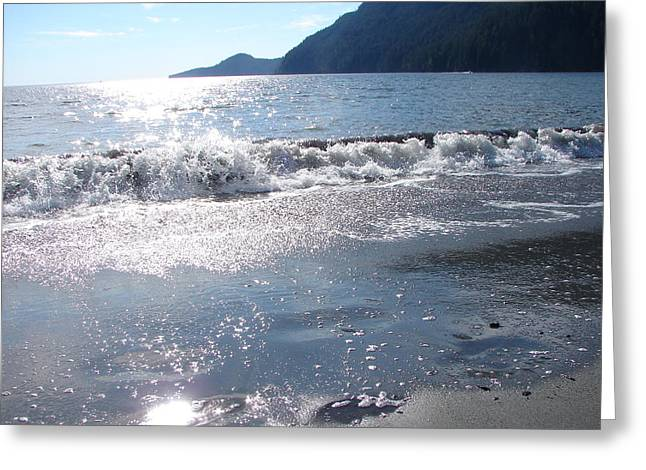 Port Renfrew Greeting Cards - Diamonds in the Sand Greeting Card by Chrissy Gibbs