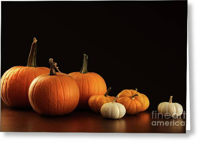 Pumpkins Greeting Cards - Different sized pumpkins and gourds on dark  Greeting Card by Sandra Cunningham