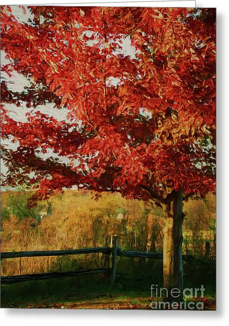 Digital Painting Maple Tree In Full Color Greeting Card by Sandra Cunningham