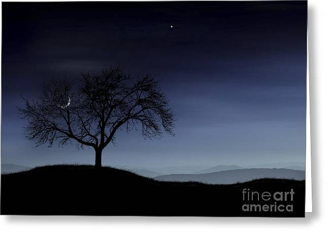 Bare Trees Greeting Cards - Digitally Generated Image Of A Tree Greeting Card by Vlad Gerasimov