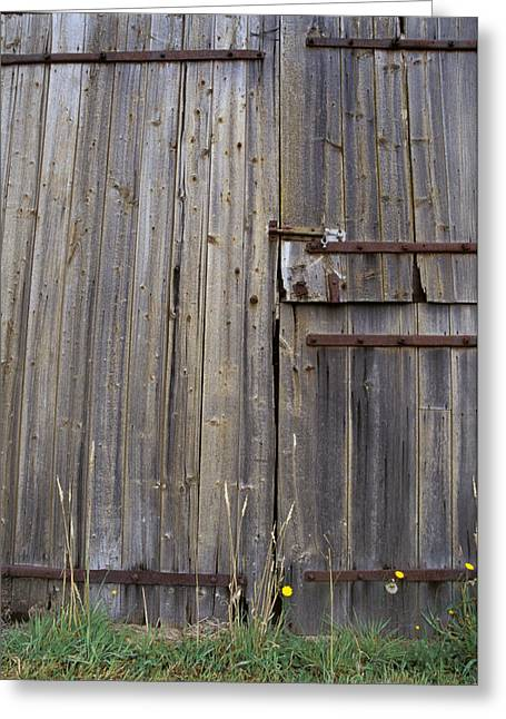 Wooden Shed Greeting Cards - Dilapidated Antique Timber Doors Greeting Card by Jason Edwards