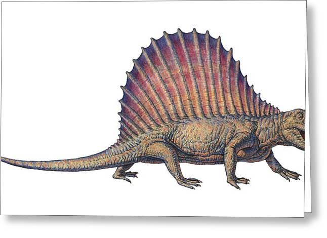 Mammalian Greeting Cards - Dimetrodon, Computer Artwork Greeting Card by Joe Tucciarone
