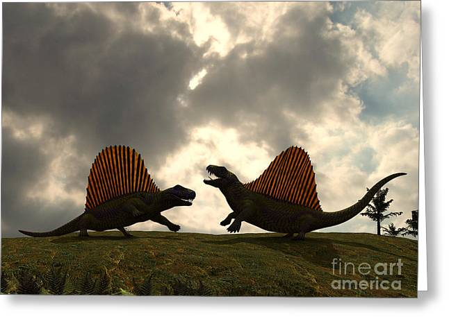 Scenario Greeting Cards - Dimetrodon Fight Over Territory Greeting Card by Walter Myers