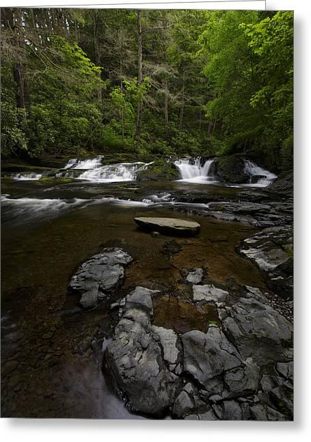 Dingmans Creek Greeting Card by Rick Berk