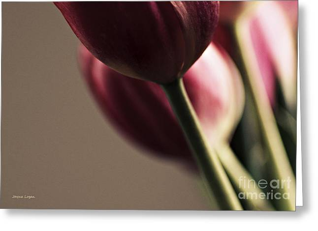 Red Wine Prints Digital Art Greeting Cards - Dinner is Served Tulips Greeting Card by Jayne Logan Intveld