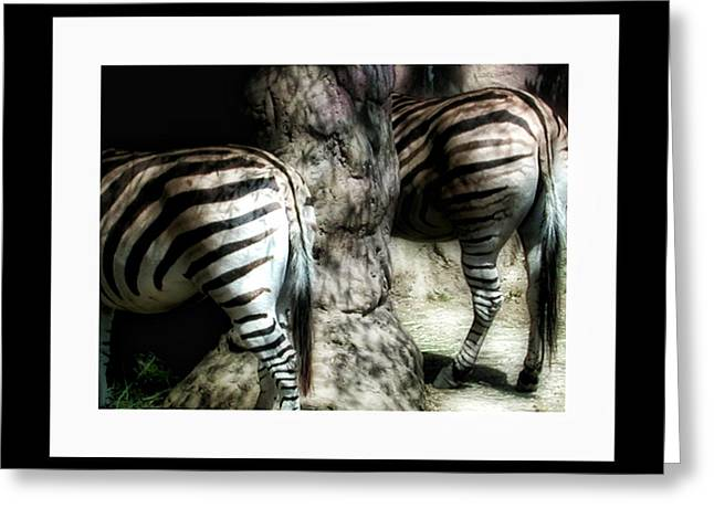 Zebra Eating Greeting Cards - Dinnertime Greeting Card by Bonnie Bruno
