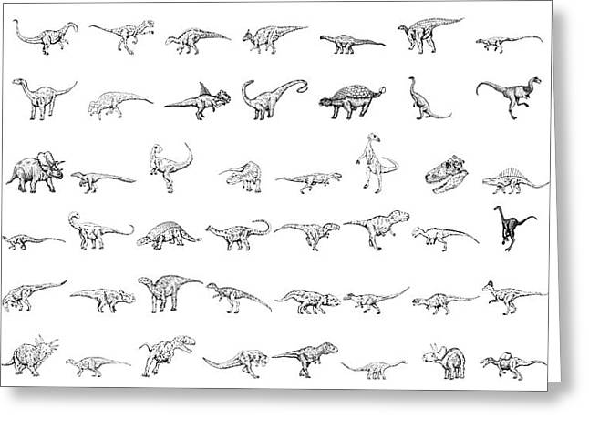 Nature Study Drawings Greeting Cards - Dinosaur Collection Greeting Card by Karl Addison