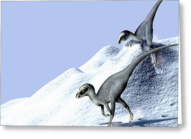 Dinosaurs Greeting Cards - Dinosaurs In Snow Greeting Card by Claus Lunau