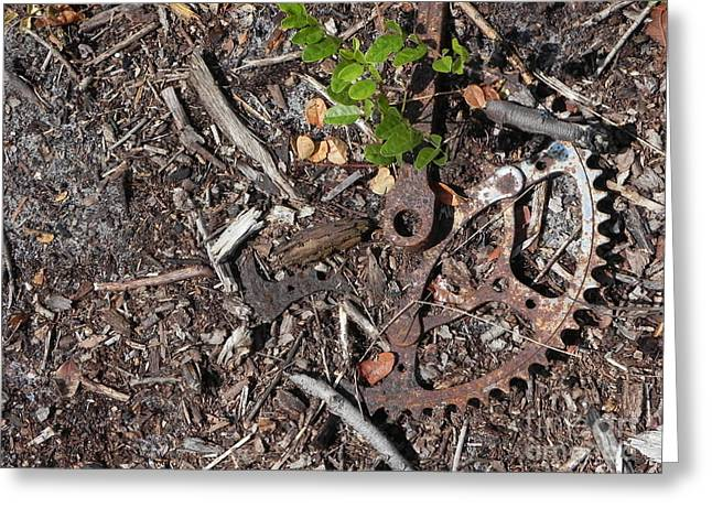 Peddle Car Greeting Cards - Dirt in the Gears Greeting Card by Jack Norton
