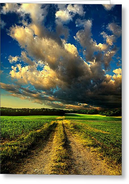 Geographic Greeting Cards - Dirt Road Greeting Card by Phil Koch