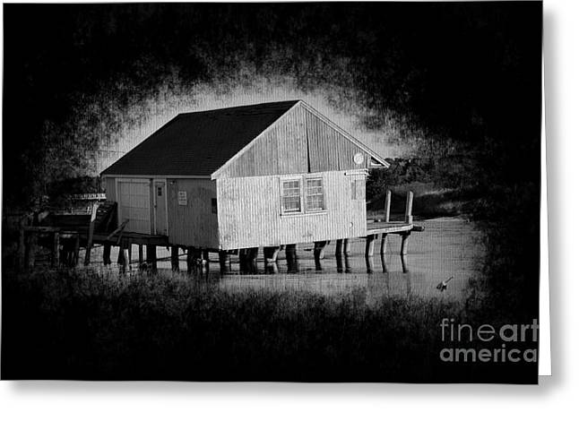 Harwich Greeting Cards - Dirty Little BoatHouse Greeting Card by Luke Moore